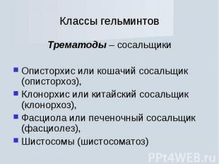 Трематоды – сосальщики Трематоды – сосальщики Описторхиc или кошачий сосальщик (