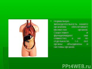 Нормальную жизнедеятельность нашего организма обеспечивает множество органов. Су