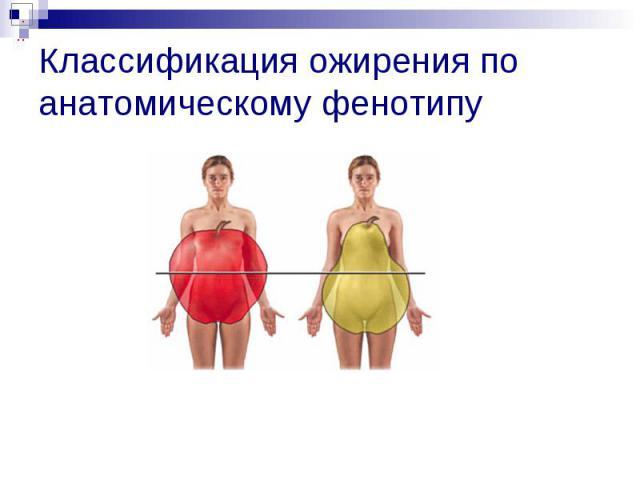 Классификация ожирения по анатомическому фенотипу
