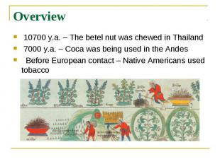 Overview 10700 y.a. – The betel nut was chewed in Thailand 7000 y.a.