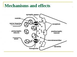 Mechanisms and effects