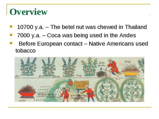 Overview 10700 y.a. – The betel nut was chewed in Thailand 7000 y.a. – Coca was being used in the Andes Before European contact – Native Americans used tobacco