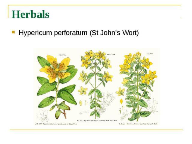 Herbals Hypericum perforatum (St John's Wort)