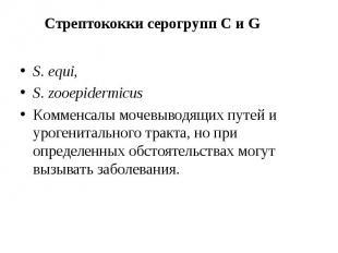 S. equi, S. equi, S. zooepidermicus Комменсалы мочевыводящих путей и урогениталь
