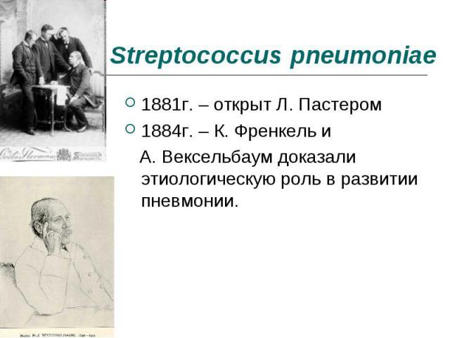 1881г. – открыт Л. Пастером 1881г. – открыт Л. Пастером 1884г. – К. Френкель и А. Вексельбаум доказали этиологическую роль в развитии пневмонии.