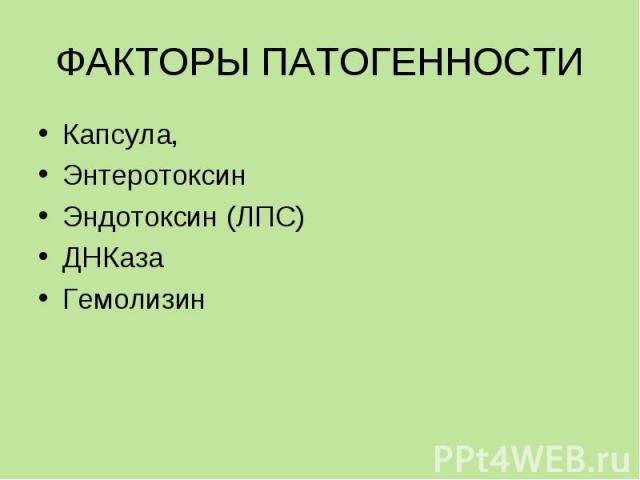 Капсула, Капсула, Энтеротоксин Эндотоксин (ЛПС) ДНКаза Гемолизин