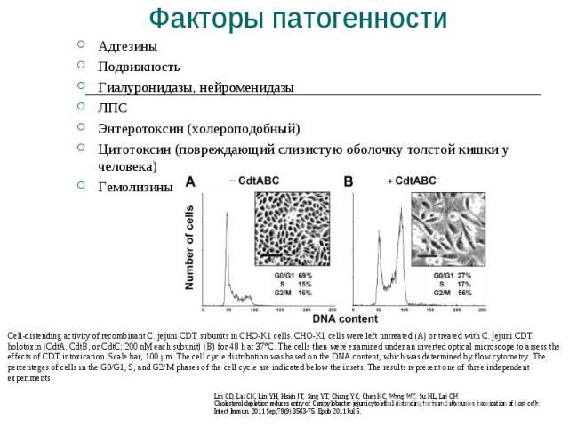 Адгезины Адгезины Подвижность Гиалуронидазы, нейроменидазы ЛПС Энтеротоксин (холероподобный) Цитотоксин (повреждающий слизистую оболочку толстой кишки у человека) Гемолизины