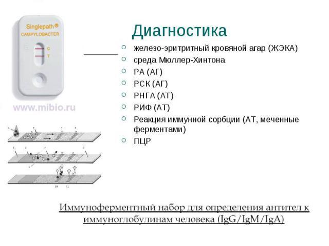 железо-эритритный кровяной агар (ЖЭКА) железо-эритритный кровяной агар (ЖЭКА) среда Мюллер-Хинтона РА (АГ) РСК (АГ) РНГА (AT) РИФ (AT) Реакция иммунной сорбции (AT, меченные ферментами) ПЦР