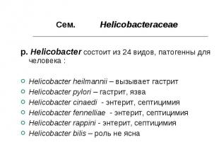 Сем. Helicobacteraceae Сем. Helicobacteraceae p. Helicobacter состоит из 24 видо