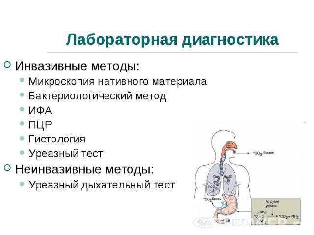Инвазивные методы: Инвазивные методы: Микроскопия нативного материала Бактериологический метод ИФА ПЦР Гистология Уреазный тест Неинвазивные методы: Уреазный дыхательный тест