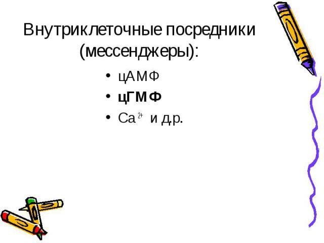 цАМФ цАМФ цГМФ Са 2+ и д.р.