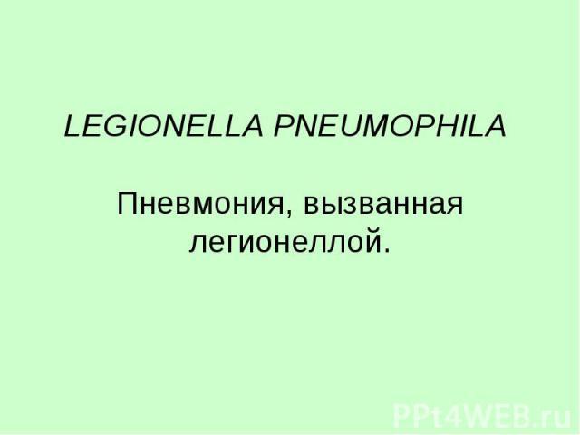 LEGIONELLA PNEUMOPHILA Пневмония, вызванная легионеллой.