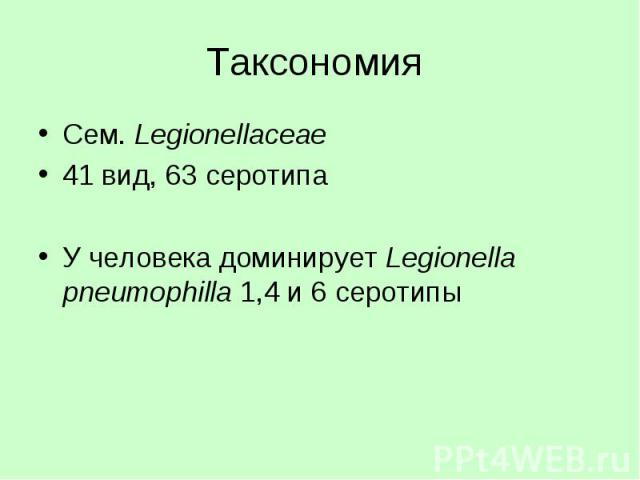 Таксономия Сем. Legionellaceae 41 вид, 63 серотипа У человека доминирует Legionella pneumophilla 1,4 и 6 серотипы