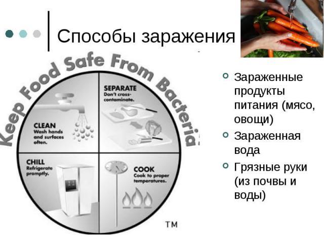 Способы заражения Зараженные продукты питания (мясо, овощи) Зараженная вода Грязные руки (из почвы и воды)