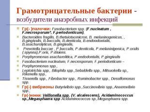 Гр(- )палочки: Fusobacterium spp. (F.nucleatum , F.necrosporum*, F.periodonticum