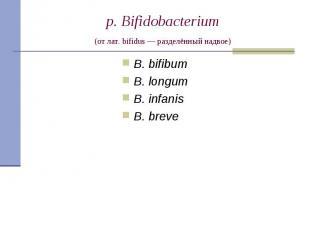B. bifibum B. bifibum B. longum B. infanis B. breve