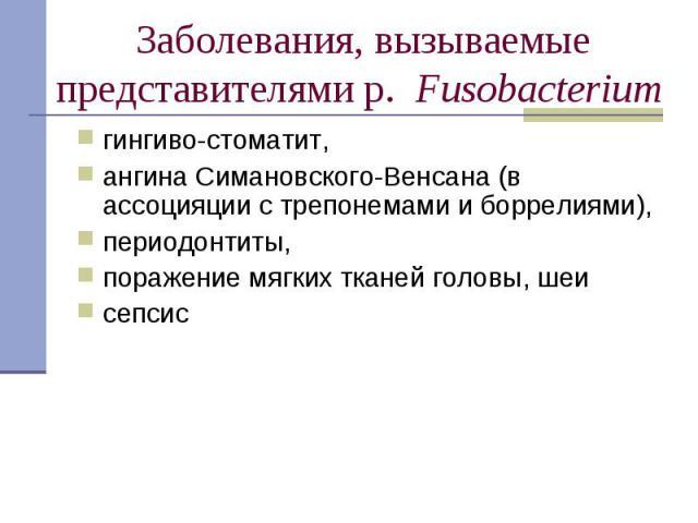 гингиво-стоматит, гингиво-стоматит, ангина Симановского-Венсана (в ассоцияции с трепонемами и боррелиями), периодонтиты, поражение мягких тканей головы, шеи сепсис
