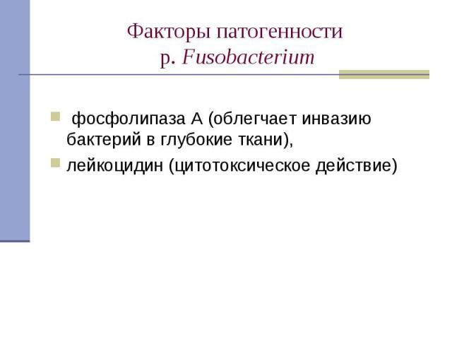 фосфолипаза А (облегчает инвазию бактерий в глубокие ткани), лейкоцидин (цитотоксическое действие)
