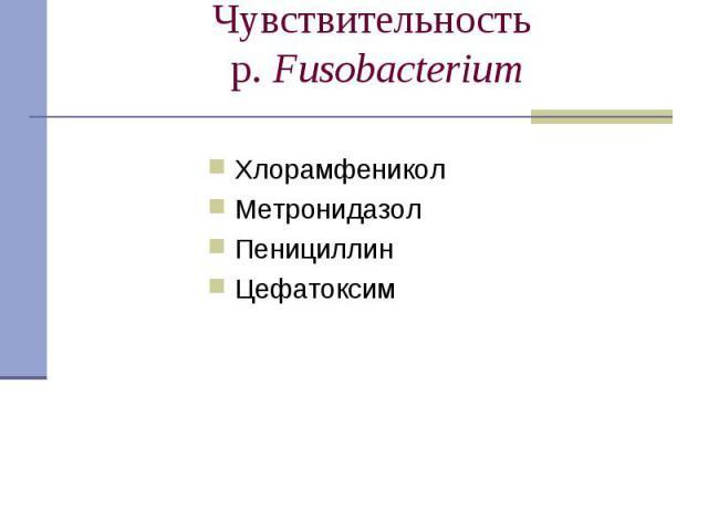 Хлорамфеникол Хлорамфеникол Метронидазол Пенициллин Цефатоксим