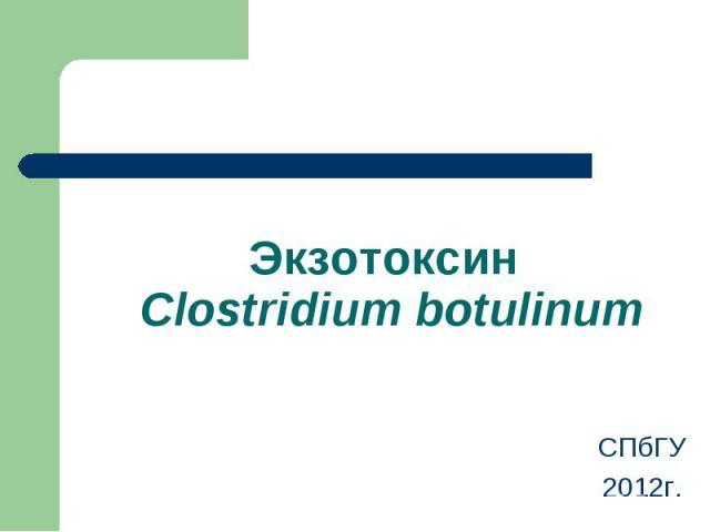 СПбГУ СПбГУ 2012г.