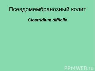 Псевдомембранозный колит Clostridium difficile
