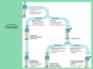 Пути развития инфекции, вызванной Clostridium difficile