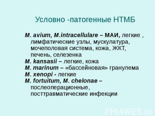 M. avium, M.intracellulare – МАИ, легкие , лимфатические узлы, мускулатура, моче