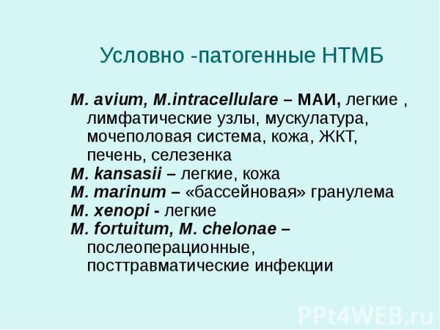 M. avium, M.intracellulare – МАИ, легкие , лимфатические узлы, мускулатура, мочеполовая система, кожа, ЖКТ, печень, селезенка M. avium, M.intracellulare – МАИ, легкие , лимфатические узлы, мускулатура, мочеполовая система, кожа, ЖКТ, печень, селезен…
