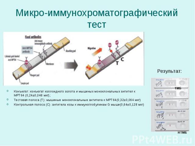 Конъюгат: конъюгат коллоидного золота и мышиных моноклональных антител к МРТ64 (0,24±0,048 мкг); Конъюгат: конъюгат коллоидного золота и мышиных моноклональных антител к МРТ64 (0,24±0,048 мкг); Тестовая полоса (Т): мышиные моноклональные антитела к …