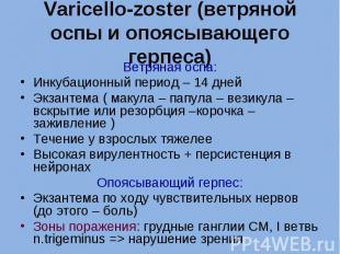 Ветряная оспа: Ветряная оспа: Инкубационный период – 14 дней Экзантема ( макула