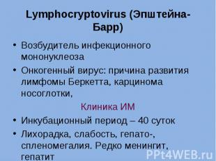 Возбудитель инфекционного мононуклеоза Возбудитель инфекционного мононуклеоза Он