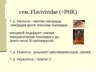 р. Flavivirus – желтая лихорадка, р. Flavivirus – желтая лихорадка, лихорадка де