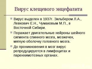 Вирус выделен в 1937г. Зильбером Л.А., Левкович Е.Н., Чумаковым М.П., в Восточно