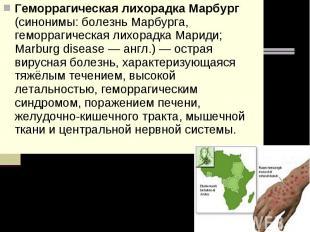 Геморрагическая лихорадка Марбург (синонимы: болезнь Марбурга, геморрагическая л