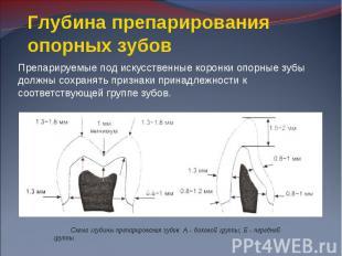 Препарируемые под искусственные коронки опорные зубы должны сохранять признаки п