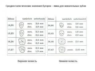 Среднестатистические значения бугорок – ямка для жевательных зубов Среднестатист