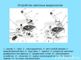 Устройство световых микроскопов