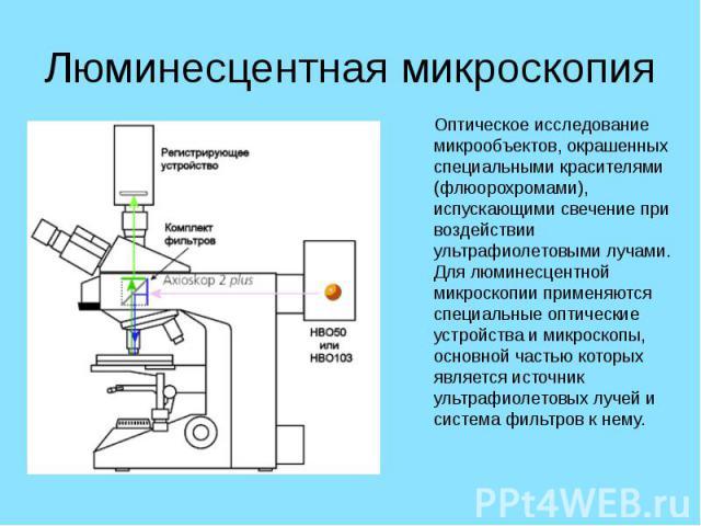 Люминесцентная микроскопия