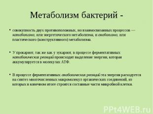 Метаболизм бактерий - совокупность двух противоположных, но взаимосвязанных проц