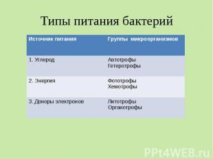 Типы питания бактерий