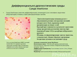 Дифференциально-диагностические среды Среда МакКонки Среды МакКонки в качестве д
