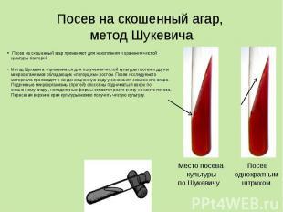 Посев на скошенный агар, метод Шукевича