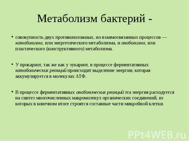 Метаболизм бактерий - совокупность двух противоположных, но взаимосвязанных процессов — катаболизма, или энергетического метаболизма, и анаболизма, или пластического (конструктивного) метаболизма. У прокариот, так же как у эукариот, в процессе ферме…