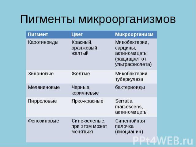 Пигменты микроорганизмов