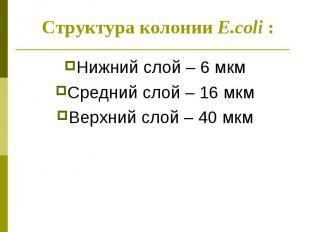 Нижний слой – 6 мкм Нижний слой – 6 мкм Средний слой – 16 мкм Верхний слой – 40