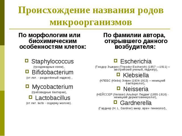По морфологим или биохимическим особенностям клеток: По морфологим или биохимическим особенностям клеток: Staphylococcus (гроздевидные кокки), Bifidobacterium (от лат. - разделённый надвое) , Mycobacterium (грибовидные бактерии), Lactobacillus (от л…