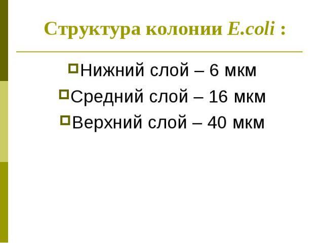 Нижний слой – 6 мкм Нижний слой – 6 мкм Средний слой – 16 мкм Верхний слой – 40 мкм