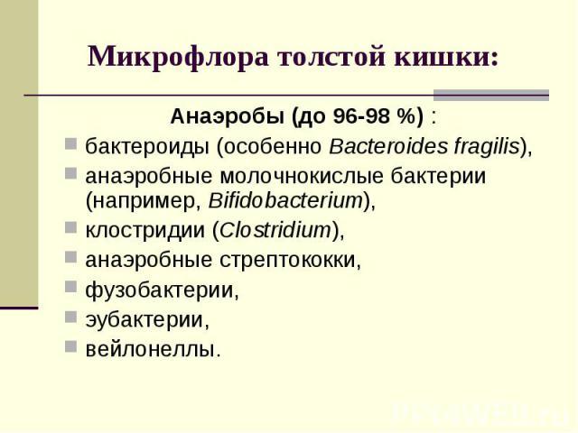 Анаэробы (до 96-98 %) : Анаэробы (до 96-98 %) : бактероиды (особенно Bacteroides fragilis), анаэробные молочнокислые бактерии (например, Bifidobacterium), клостридии (Clostridium), анаэробные стрептококки, фузобактерии, эубактерии, вейлонеллы.