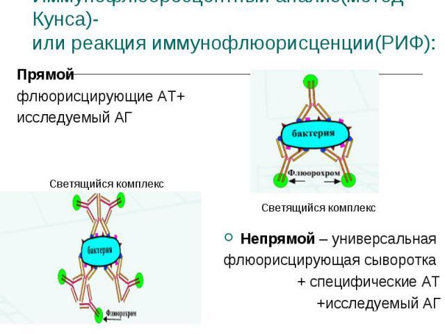 Прямой Прямой флюорисцирующие АТ+ исследуемый АГ Непрямой – универсальная флюорисцирующая сыворотка + специфические АТ +исследуемый АГ