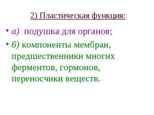 2) Пластическая функция: а) подушка для органов; б) компоненты мембран, предшест